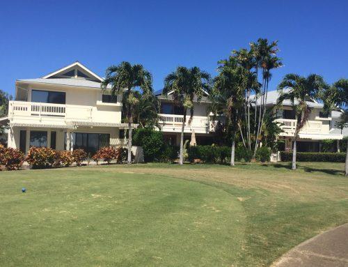 Hawaiian Winter